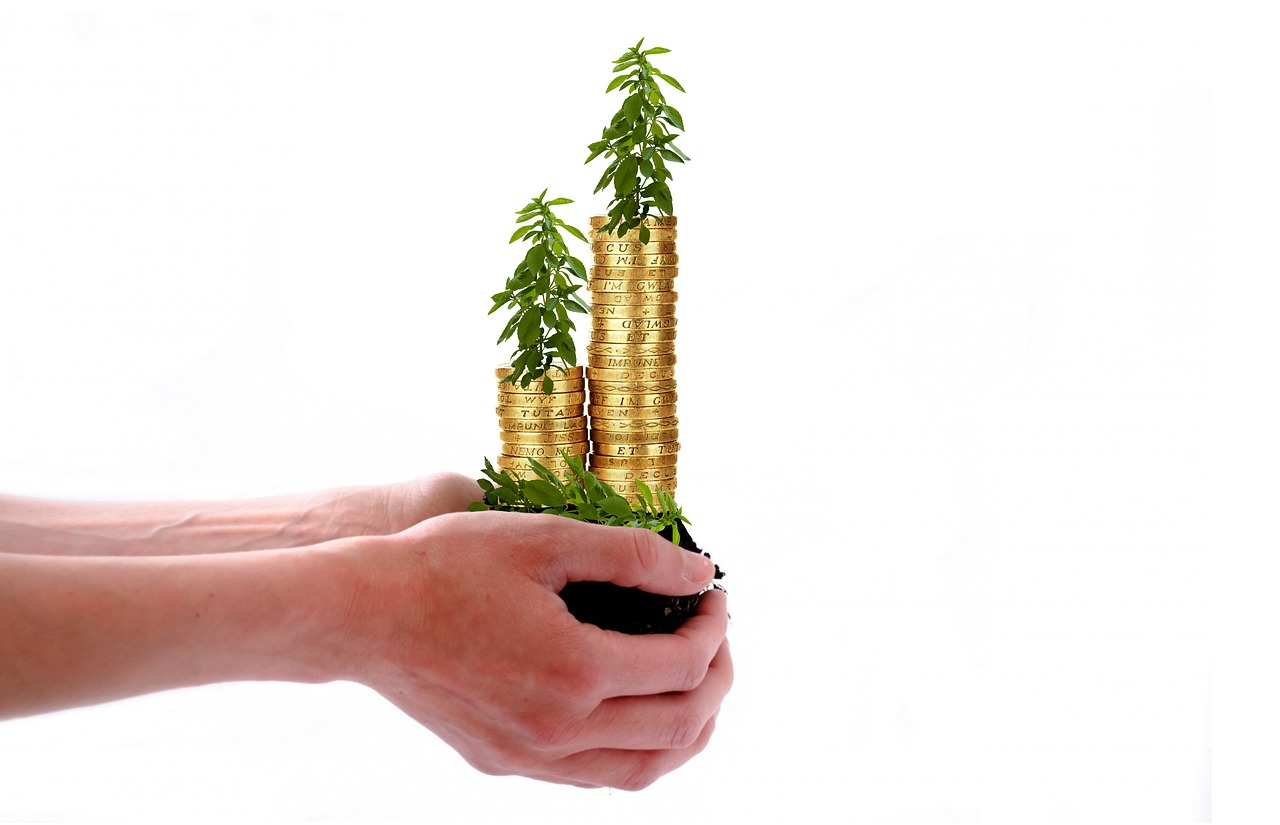 Cashflow advise for small businesses